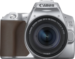 Зеркальный Фотоаппарат Canon EOS 250D серебристый 24.1Mpix EF-S 18-55mm f/1:4-5.6 IS STM 3 4K Full HD SDXC Li-ion